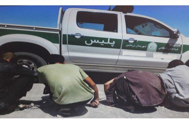 دستگیری سارقان محصولات کشاورزی در عملیات ضربتی پلیس نرماشیر