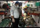 ۱۶ کشته و زخمی در حادثه برخورد دو خودرو پژو در فهرج