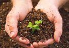 بهره برداری از یک طرح آب و خاک در ریگان